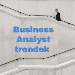 business analyst trendek