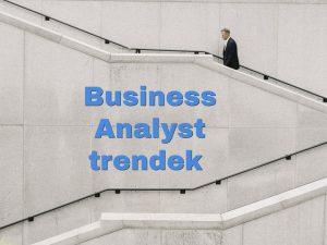 business analyst trendek